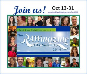 RAWmazing Life Summit 2014 with Anthea Falkiner