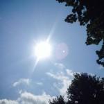 sunshine #2