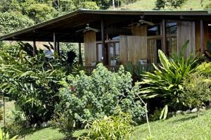 cabin-orchard-1
